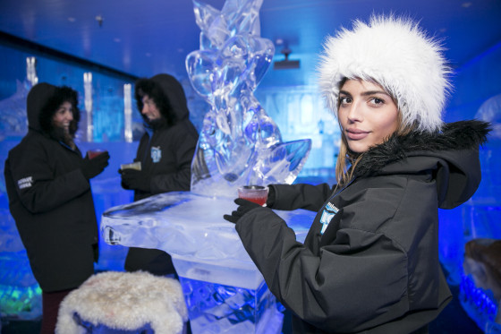 Minus 5° Ice Bar